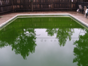 agua verde piscina por falta de mantenimiento en piscina
